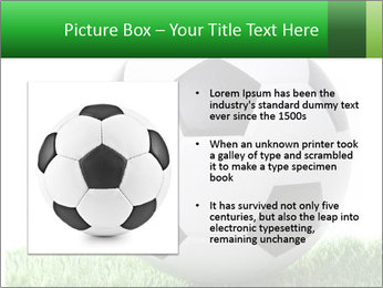 0000078747 PowerPoint Templates - Slide 13