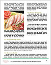 0000078748 Word Templates - Page 4
