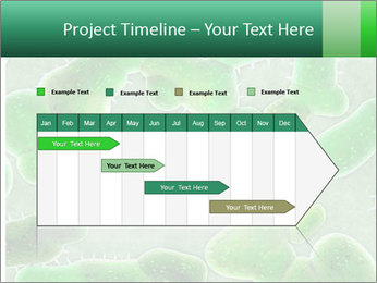 0000078753 PowerPoint Template - Slide 25