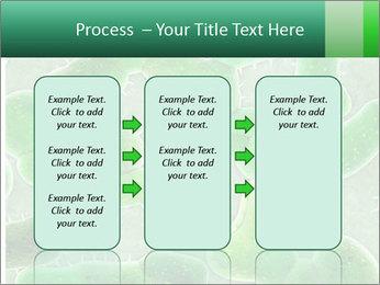 0000078753 PowerPoint Template - Slide 86
