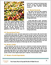 0000078758 Word Templates - Page 4