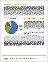 0000078762 Word Template - Page 7