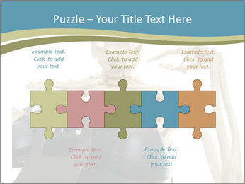 0000078771 PowerPoint Templates - Slide 41