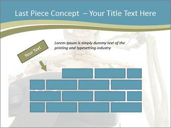 0000078771 PowerPoint Templates - Slide 46