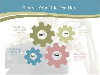 0000078771 PowerPoint Templates - Slide 47