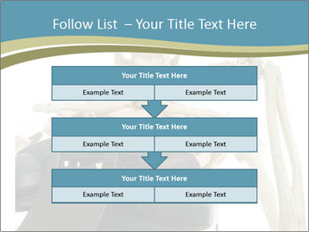 0000078771 PowerPoint Templates - Slide 60