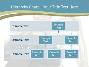 0000078771 PowerPoint Templates - Slide 67