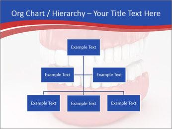 0000078774 PowerPoint Template - Slide 66