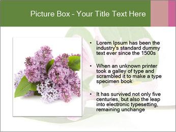 0000078779 PowerPoint Template - Slide 13