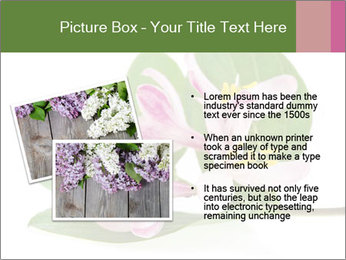 0000078779 PowerPoint Template - Slide 20