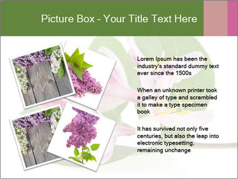 0000078779 PowerPoint Template - Slide 23