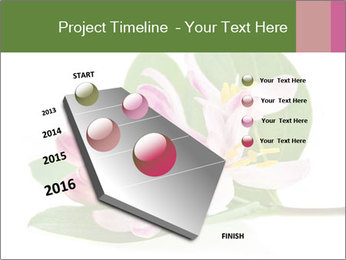 0000078779 PowerPoint Template - Slide 26