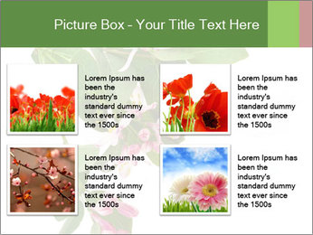 0000078780 PowerPoint Template - Slide 14