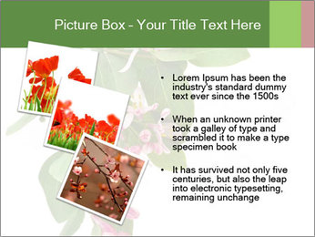 0000078780 PowerPoint Template - Slide 17