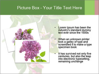 0000078780 PowerPoint Template - Slide 20