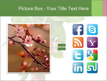 0000078780 PowerPoint Template - Slide 21