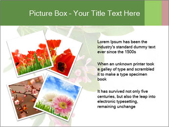 0000078780 PowerPoint Template - Slide 23