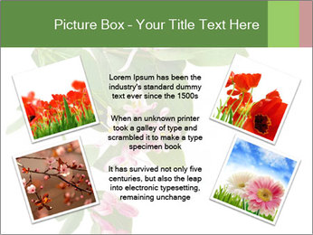 0000078780 PowerPoint Template - Slide 24