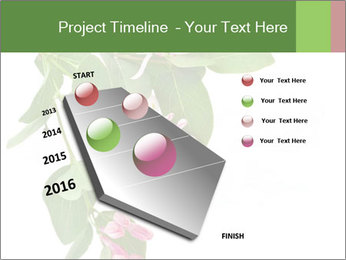 0000078780 PowerPoint Template - Slide 26