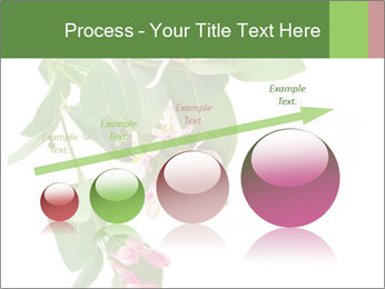 0000078780 PowerPoint Template - Slide 87