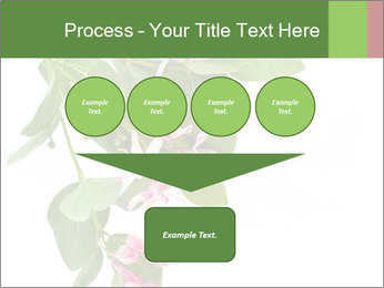 0000078780 PowerPoint Template - Slide 93