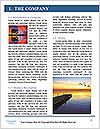 0000078782 Word Template - Page 3