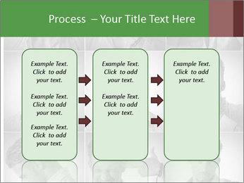 0000078784 PowerPoint Templates - Slide 86