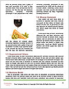 0000078794 Word Template - Page 4