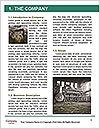 0000078795 Word Template - Page 3