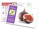0000078801 Postcard Templates