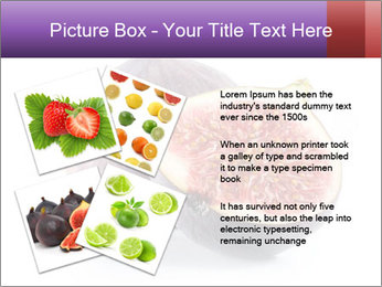 0000078801 PowerPoint Templates - Slide 23