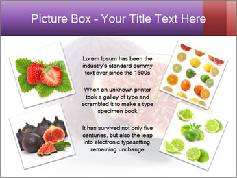 0000078801 PowerPoint Templates - Slide 24