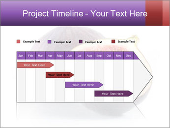 0000078801 PowerPoint Template - Slide 25