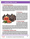 0000078801 Word Templates - Page 8