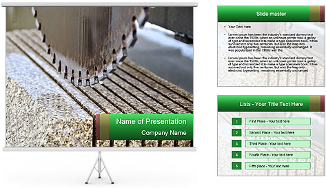 0000078804 PowerPoint Template
