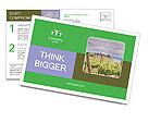 0000078806 Postcard Templates