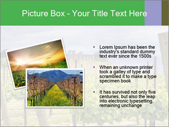 0000078806 PowerPoint Template - Slide 20
