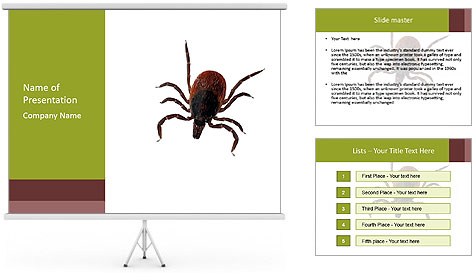 0000078809 PowerPoint Template
