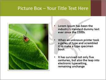 0000078809 PowerPoint Template - Slide 13