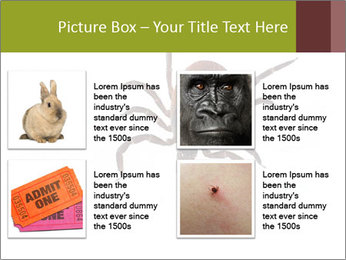 0000078809 PowerPoint Template - Slide 14