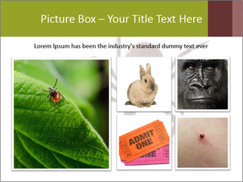 0000078809 PowerPoint Template - Slide 19