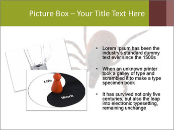 0000078809 PowerPoint Template - Slide 20