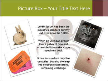 0000078809 PowerPoint Template - Slide 24