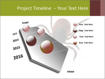 0000078809 PowerPoint Template - Slide 26