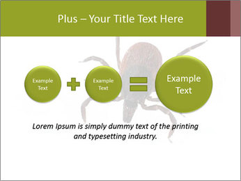 0000078809 PowerPoint Template - Slide 75