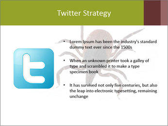0000078809 PowerPoint Template - Slide 9
