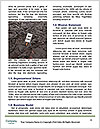 0000078819 Word Templates - Page 4