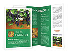 0000078826 Brochure Templates