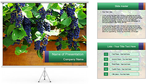 0000078826 PowerPoint Template