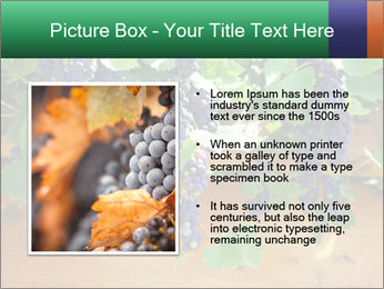 0000078826 PowerPoint Templates - Slide 13